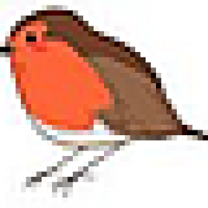 tiny robin.png